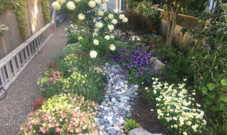 Dunbar Lawns & Garden Ltd